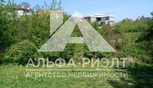 Объект_3288796
